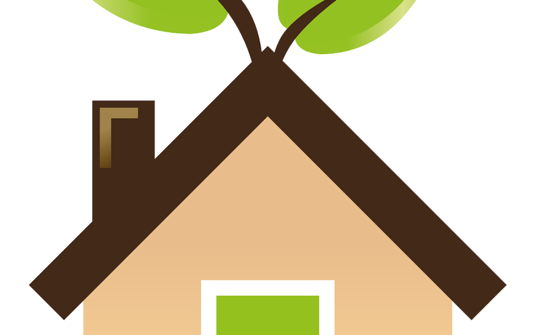 Affordable Eco-Friendly Housing